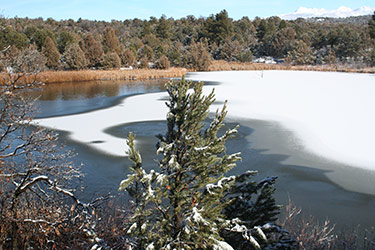 Aerators protect fish and keep open water for winter birds